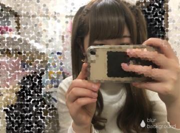 「こんばんは♡」11/19(月) 02:34 | すず✧可愛すぎる猫顔美少女✧の写メ・風俗動画