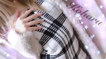 「昨日のお礼!」11/19(月) 18:01 | 七星 こはるの写メ・風俗動画