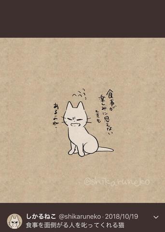 「え、」11/20(火) 04:38 | まりなの写メ・風俗動画