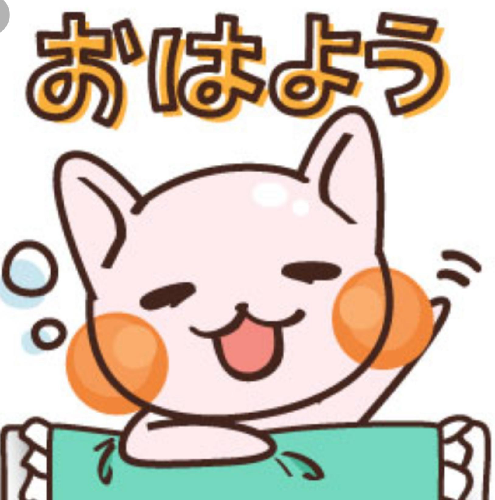 ココナ☆新人割り対応「おはょん(´∇`)」11/21(水) 06:53 | ココナ☆新人割り対応の写メ・風俗動画