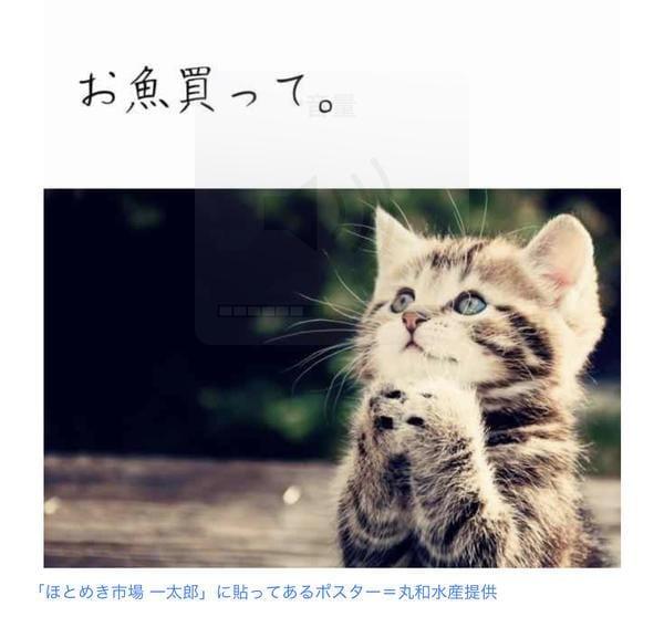 「ずっこい」11/21日(水) 07:58 | かりなの写メ・風俗動画