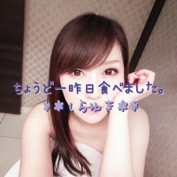 「[お題]from:せい坊さん」11/23(金) 19:09 | しらゆきの写メ・風俗動画