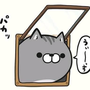 「月曜日ですよ!!」11/26(月) 10:31 | かえでの写メ・風俗動画