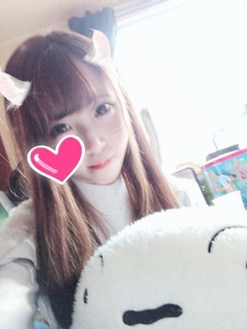 「(*・∀・*)ノ ハーィ」11/26(月) 15:46   芹那の写メ・風俗動画