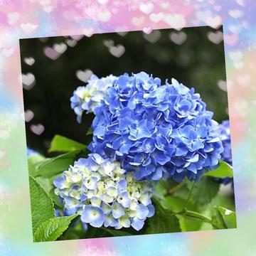 「お疲れ様です」06/15(水) 14:43   園原 あやのの写メ・風俗動画