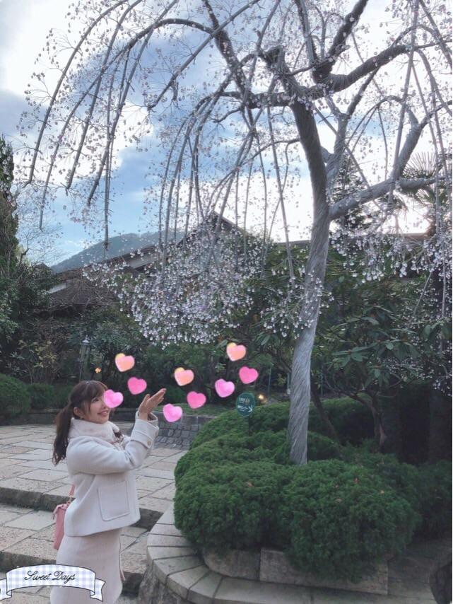 「箱根♡」11/28(水) 23:22   みなみの写メ・風俗動画