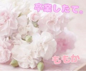 「11/30(金)お礼??」12/01(土) 05:29 | ももかの写メ・風俗動画