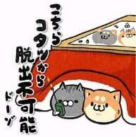 「寒い」12/06(木) 10:18 | かえでの写メ・風俗動画
