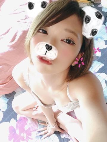 「受付終了ー」12/07日(金) 22:09 | るいの写メ・風俗動画