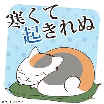 「今週末は…」12/08(土) 10:11 | かえでの写メ・風俗動画