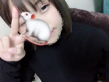 りあ「こんばんは」12/09(日) 01:54 | りあの写メ・風俗動画