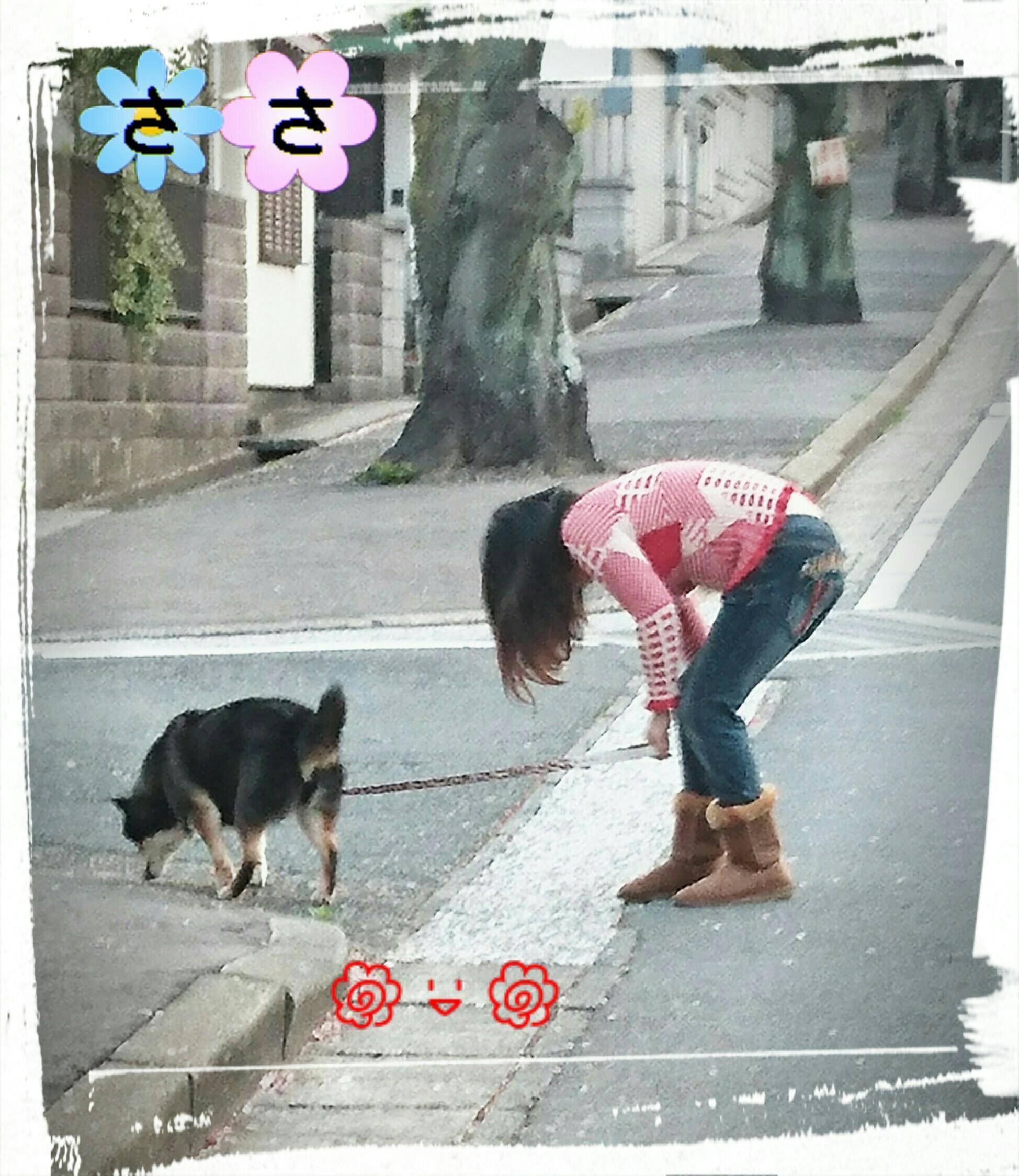 「ようやく」12/10(月) 09:49   ささの写メ・風俗動画
