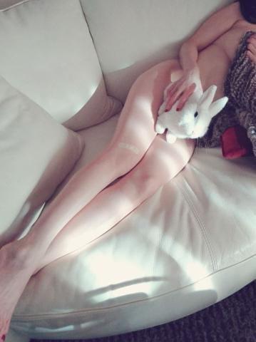「おはようございます??」12/11(火) 07:00   Harukaの写メ・風俗動画