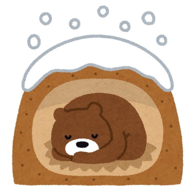 「おやすみなさい」12/11(火) 08:55   いおりの写メ・風俗動画