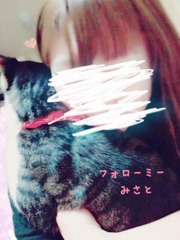 みさと☆2年生☆「猫肌が恋しい季節ですね」12/11(火) 14:33 | みさと☆2年生☆の写メ・風俗動画