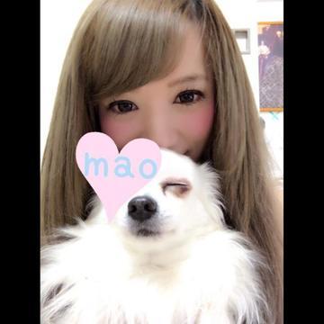 「昨日」03/04(土) 15:35 | まお『可愛いやんちゃな子猫』の写メ・風俗動画