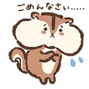 「ごめんなさい(*>_