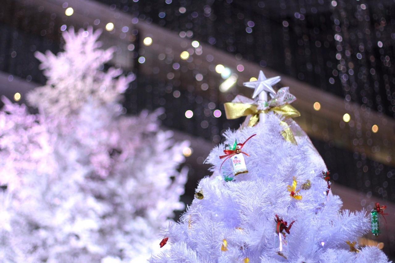 くるみ「ありがとうございました」12/14(金) 02:01 | くるみの写メ・風俗動画