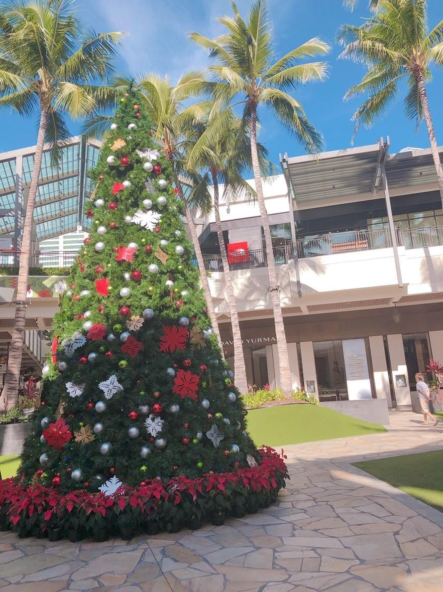 「クリスマス」12/14(金) 09:04 | 亜矢の写メ・風俗動画