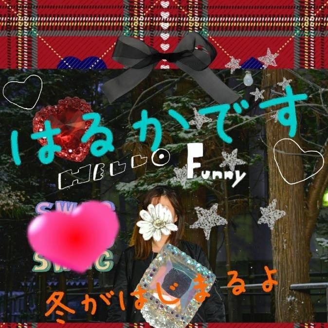 「19:00~(^O^)」12/14日(金) 10:52 | はるかの写メ・風俗動画