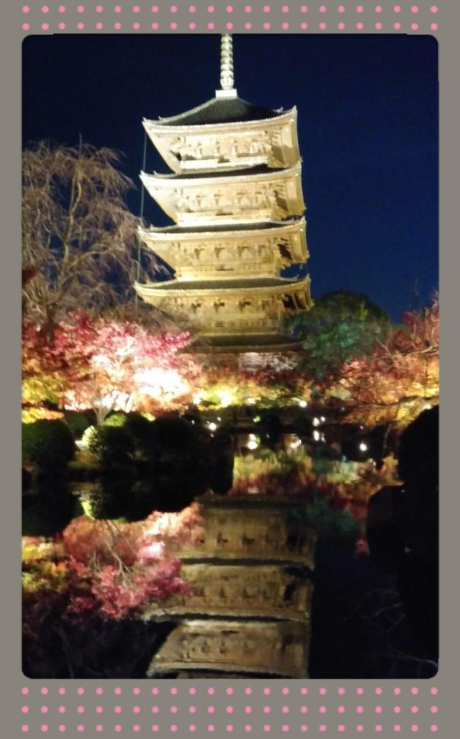 「京都の」12/14(金) 18:21   あおいの写メ・風俗動画