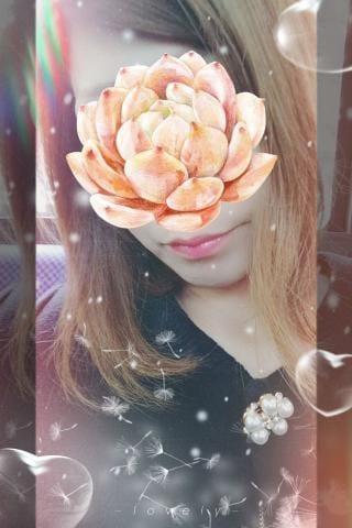 賀川 りょう「こんにちわ☆」12/15(土) 15:46   賀川 りょうの写メ・風俗動画