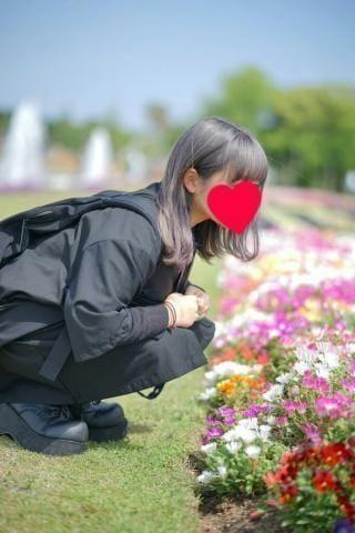 「」12/15(土) 23:18 | なるみの写メ・風俗動画