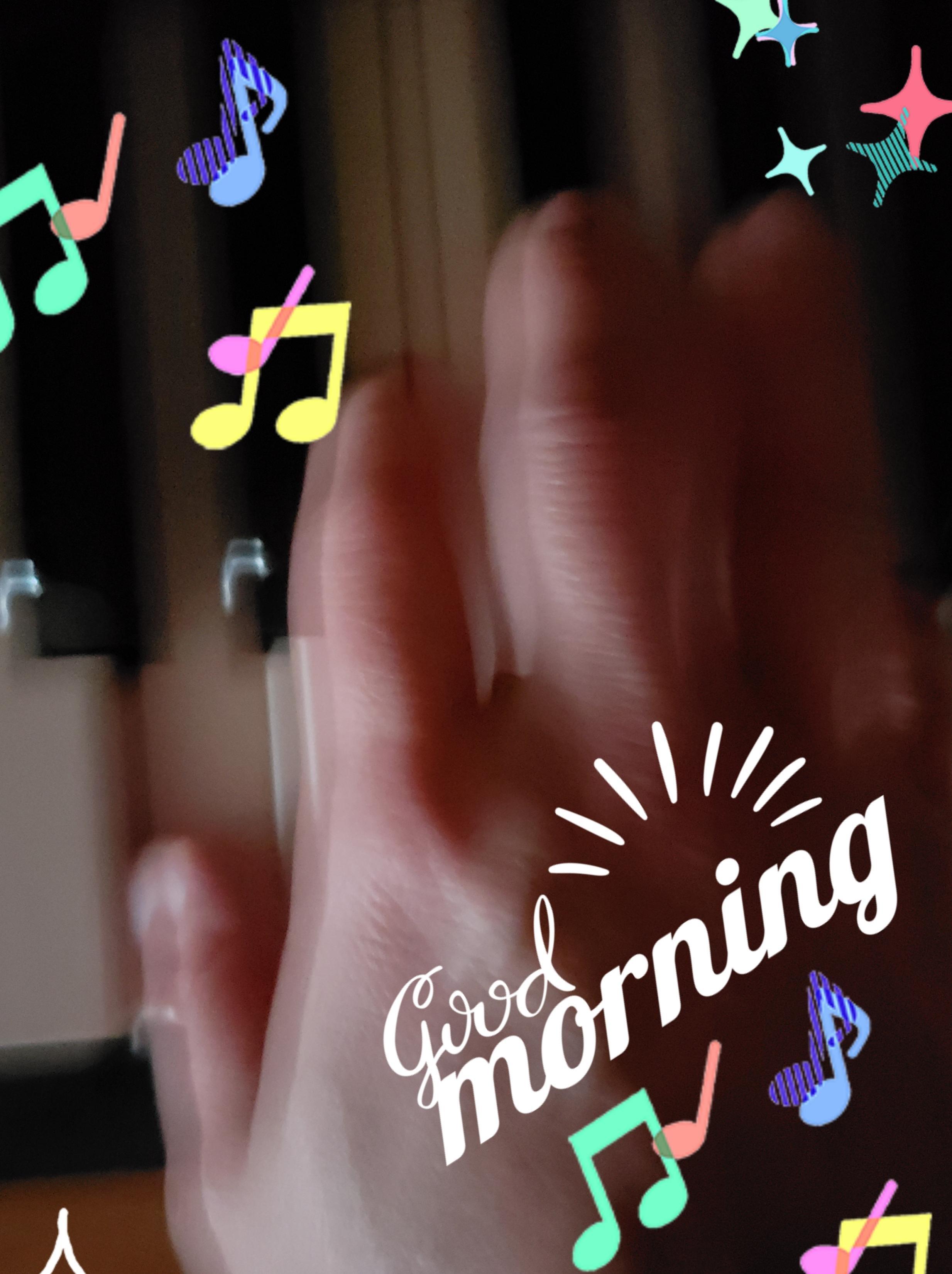 みつ「ご予約ありがとうございます(^_-)」12/16(日) 11:17 | みつの写メ・風俗動画