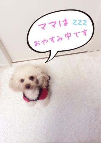 なな「本日 ☆ 病欠 ( ??? ? ??`)」12/17(月) 14:42 | ななの写メ・風俗動画