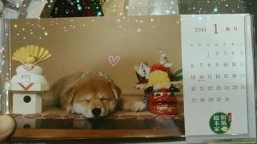 「おやすみなさい」01/04(金) 03:29 | いとの写メ・風俗動画