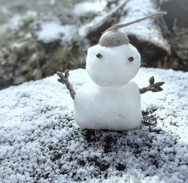 「散歩して雪だるまと」01/05(土) 08:30 | まきの写メ・風俗動画