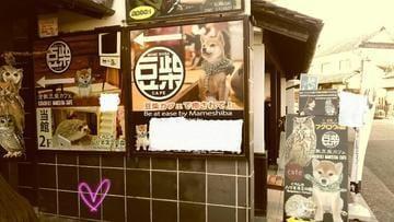 「美観地区」01/14(月) 10:56 | いとの写メ・風俗動画