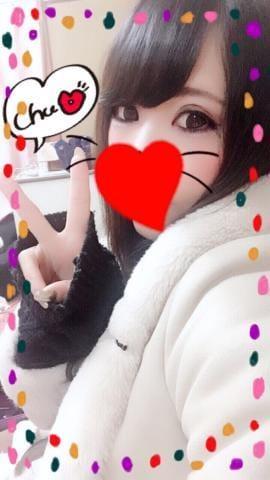 「出勤しますっ?」01/15日(火) 21:00   ココアの写メ・風俗動画