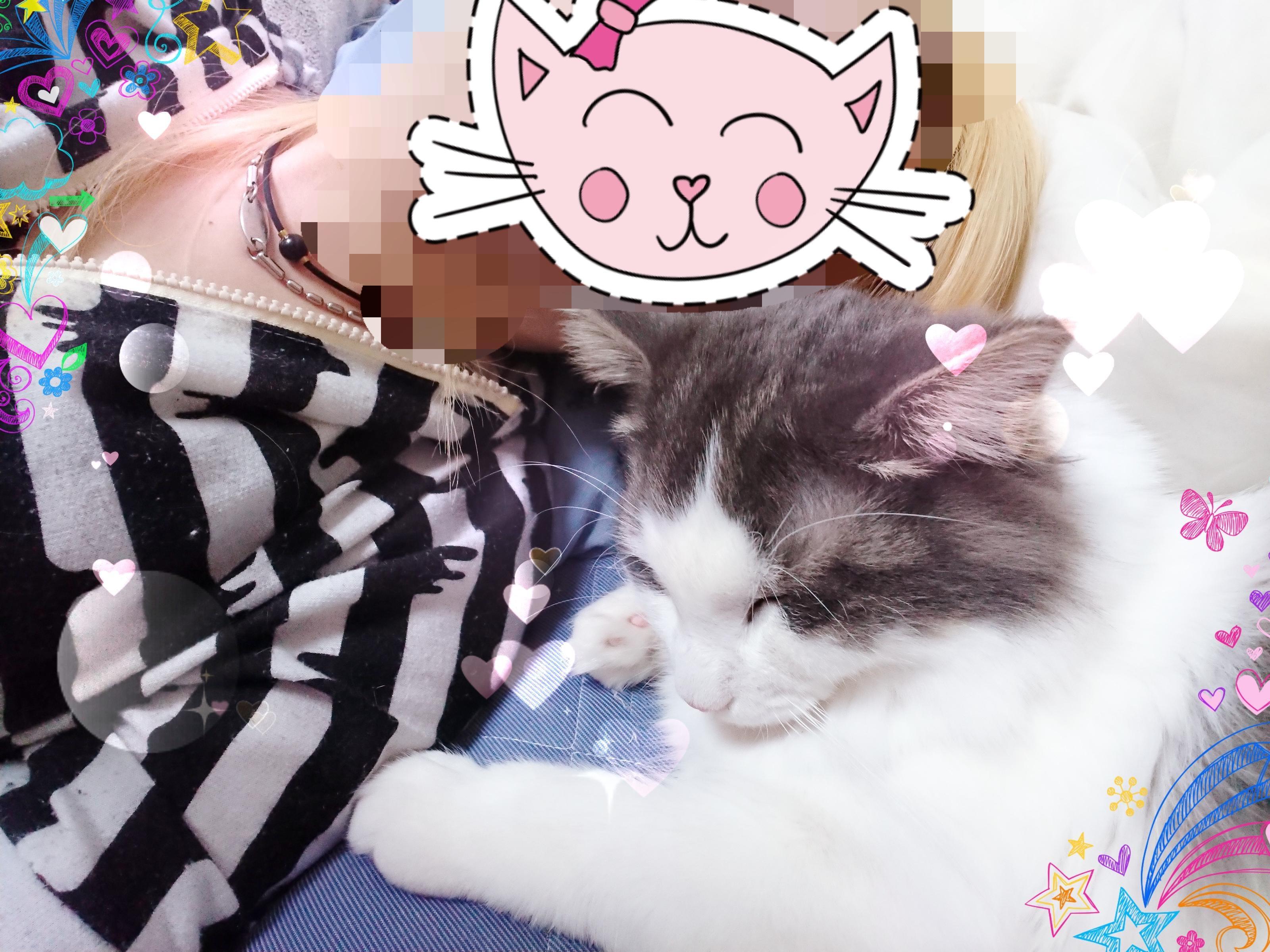 「休息。」01/16(水) 01:53 | No.83 椎名 リンゴの写メ・風俗動画