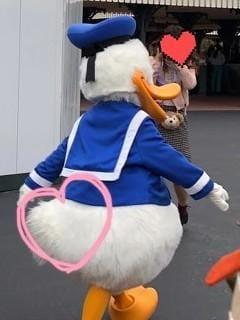 「ドナルドのお尻可愛くないですか( ̇꒳ ̇ )❤」01/16(水) 09:00 | すみれの写メ・風俗動画