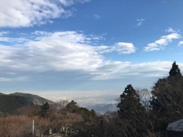 みゆ「野性のお猿さんと遭遇」01/16(水) 15:01 | みゆの写メ・風俗動画
