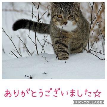 「☆ 昨日のお礼です ☆」01/19日(土) 11:38 | 星空 きれいの写メ・風俗動画