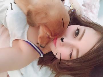 「最近」01/21(月) 17:22 | うた【G】セクシー女優顔負け☆の写メ・風俗動画