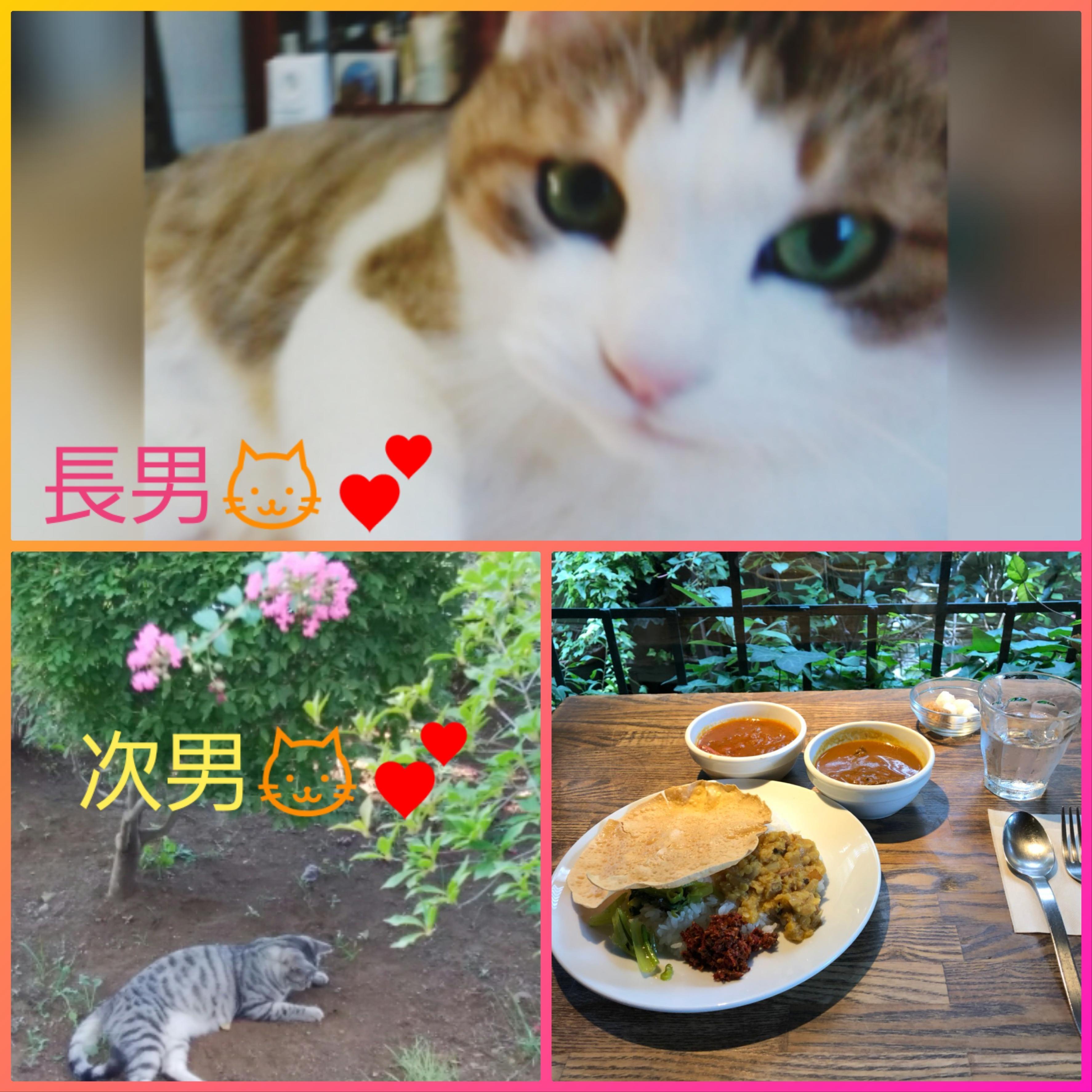 三好りん「明日ご予約?」01/22(火) 18:28   三好りんの写メ・風俗動画