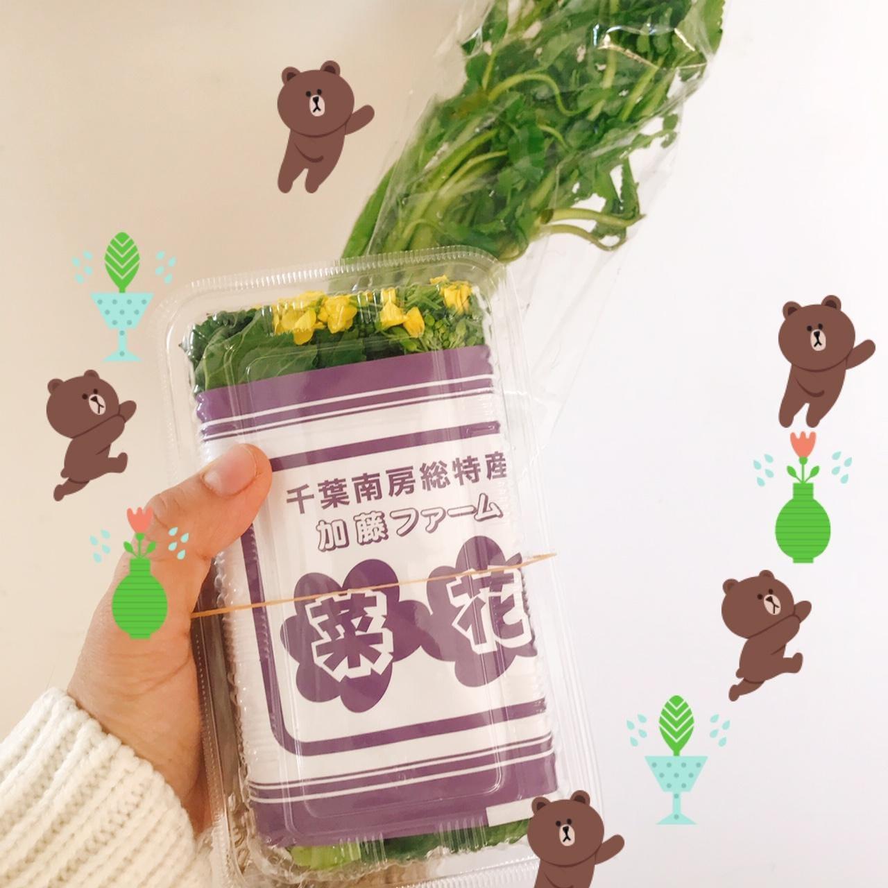 岡崎なつみ「春の訪れを感じました」01/23(水) 00:52 | 岡崎なつみの写メ・風俗動画