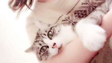 なぎさ/癒し系エステマイスター「猫の手」01/23(水) 17:32 | なぎさ/癒し系エステマイスターの写メ・風俗動画