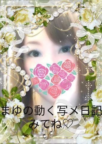 まゆ「動く写メ日記みてね?」01/23(水) 21:30   まゆの写メ・風俗動画