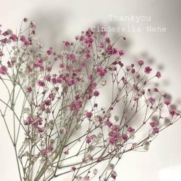 「お礼です」01/24(木) 01:16   ねねの写メ・風俗動画
