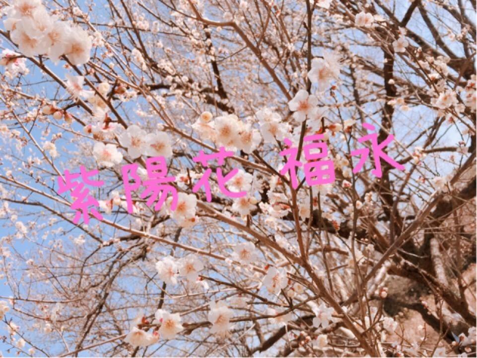 「本日快晴ナリ♪」02/16(土) 12:59 | 福永の写メ・風俗動画