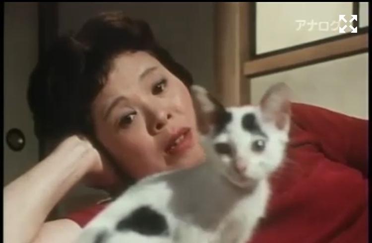 「元上司に復讐?」02/16日(土) 23:30   けいこの写メ・風俗動画