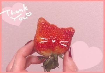 「お礼?Yさん」02/17日(日) 19:49   石田ひかりの写メ・風俗動画