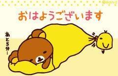 「*おはようございます*」02/19日(火) 16:03 | 椎名 のえるの写メ・風俗動画