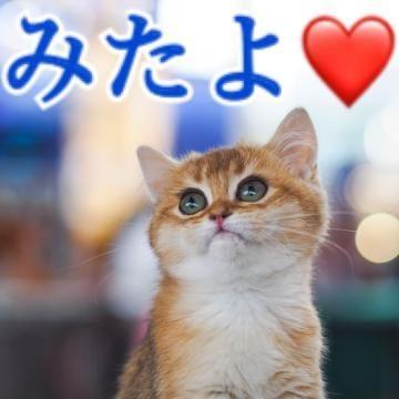 「19日みたよ??」02/20(水) 14:05 | 渡辺ららの写メ・風俗動画