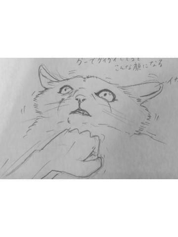 えま「お店まったりだし」03/19(火) 22:15 | えまの写メ・風俗動画