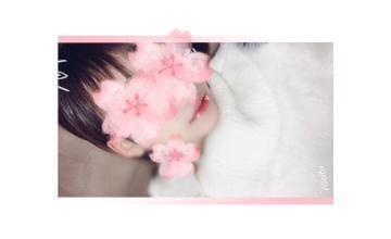 「お礼!」03/20(水) 01:24   ことねの写メ・風俗動画